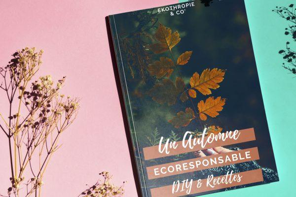 """Ebook """"Un Automne éco-responsable DIY et recettes"""""""